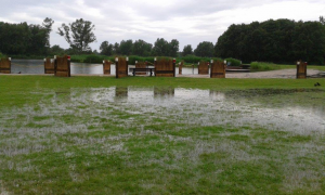 paardenevenement 2