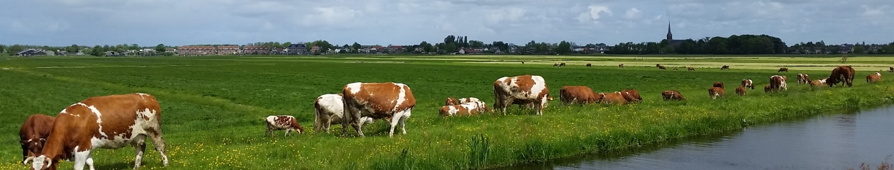 Stompwijk